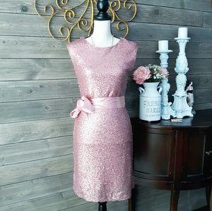 Venus Pink Sequined Sparkle Dress